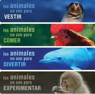 Los animales no son...